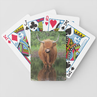 カードを遊んでいる高地牛 バイスクルトランプ