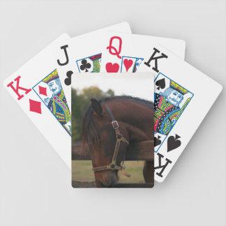 カードを遊んでいるExresso CCAのAndalusian バイスクルトランプ