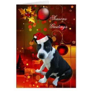 カードクリスマスのピットブルの小犬 カード