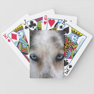 カードデッキを遊ぶハスキーな青い目 バイスクルトランプ