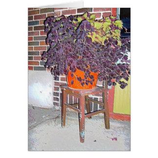 カード: シナノキの丘Mplsの植木鉢及び椅子。、MN カード