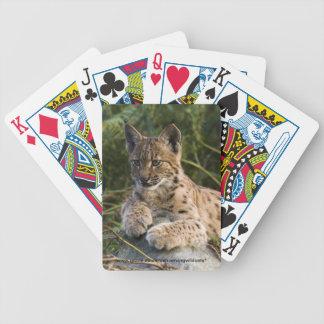 カード- Carpathianオオヤマネコ--を遊びます バイスクルトランプ