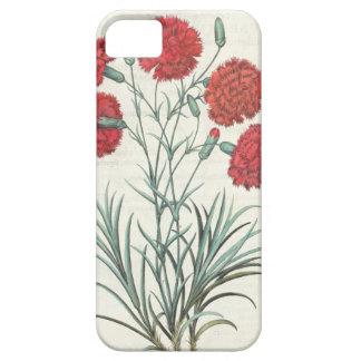 カーネーションおよびラベンダー: 1.Caryophyllus maximus pl iPhone SE/5/5s ケース