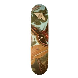 ガのスケートボードのデッキは昆虫の自然の蝶を煩わせます スケボーデッキ