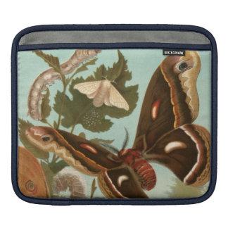 ガの虫の昆虫の自然の蝶 iPadスリーブ
