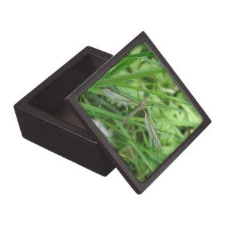 ガガンボの優れたギフト用の箱 ギフトボックス