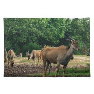 ガゼル、野生動物の動物園、羚。 ランチョンマット