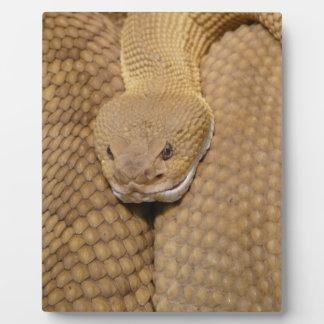 ガラガラヘビの頭部 フォトプラーク