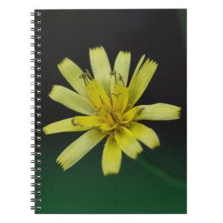 ガラガラヘビ雑草の黄色の野生の花の花柄のノート ノートブック