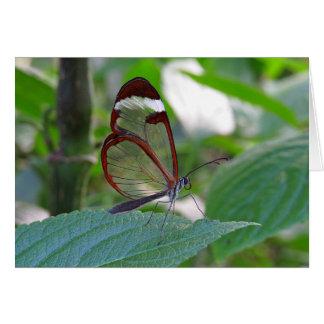 ガラス翼の蝶 カード