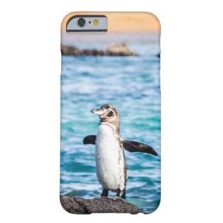 ガラパゴス諸島のペンギンの電話箱 BARELY THERE iPhone 6 ケース