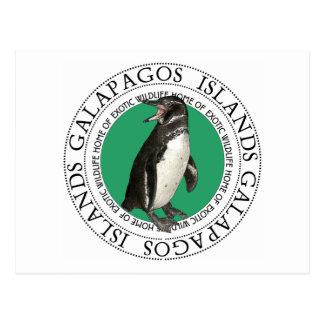 ガラパゴス諸島のペンギン ポストカード