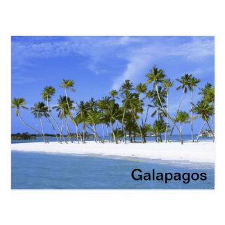 ガラパゴス-ビーチ ポストカード