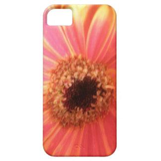 ガーベラのデイジーの花のiPhone 5の場合 iPhone SE/5/5s ケース