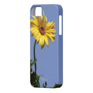 ガーベラのデイジーのiPhone 5の場合 iPhone SE/5/5s ケース