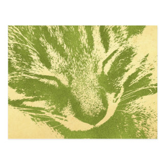 キジ猫ポストカード ポストカード