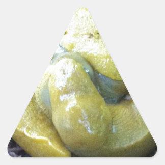 キスをするなバナナのスラグ 三角形シール