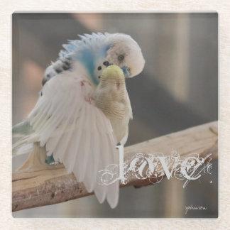 キスをするな愛鳥の写真の名前入りなカスタム ガラスコースター
