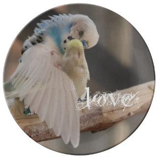 キスをするな愛鳥の写真の名前入りなカスタム 磁器プレート