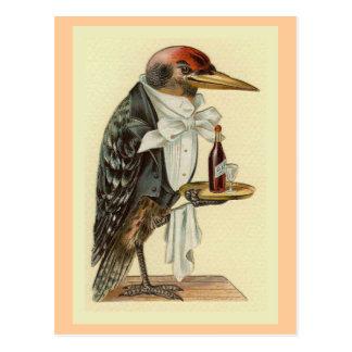 キツツキのウェイターのヴィンテージの鳥のイラストレーション ポストカード