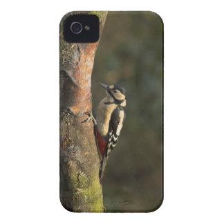 キツツキのiPhone 4/4Sの場合 Case-Mate iPhone 4 ケース
