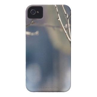 キツツキ Case-Mate iPhone 4 ケース