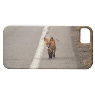 キツネを持つ鶏を遊ぶこと iPhone SE/5/5s ケース