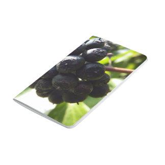 キヅタの果実の小型ジャーナル ポケットジャーナル