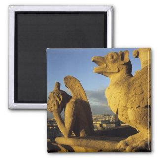 キメラ、貴婦人に関してCathedral、パリ、フランス マグネット