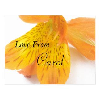 キャロル ポストカード