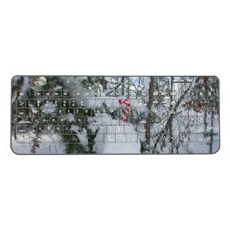 キャンディ・ケーンの屋外の装飾 ワイヤレスキーボード