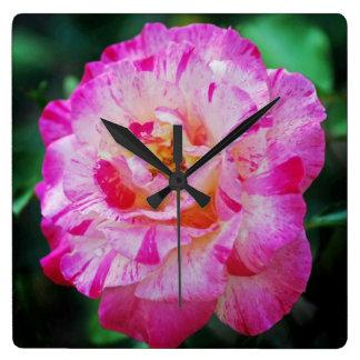 キャンデーのストライプのなピンクのバラ スクエア壁時計
