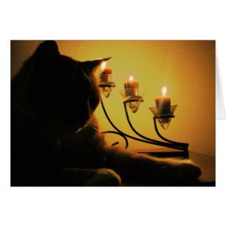 キャンドルライトの子猫 カード