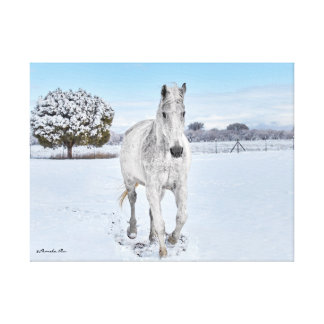 キャンバスに取付けられる雪の白馬 キャンバスプリント