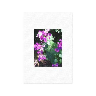 キャンバスの紫色のゼラニウムの花の写真 キャンバスプリント