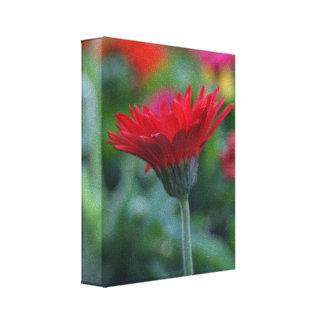 キャンバスの赤いガーベラのデイジーの花の写真 キャンバスプリント