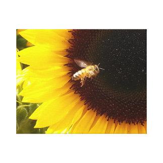 キャンバスの《昆虫》マルハナバチそしてヒマワリ キャンバスプリント