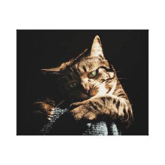 キャンバスを遊んでいるかわいい猫 キャンバスプリント