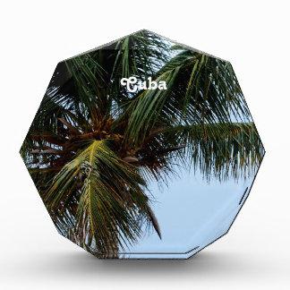 キューバのビーチ 表彰盾