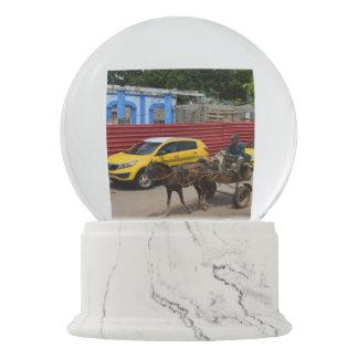 キューバの馬のカートの旧世界および新しい スノーグローブ