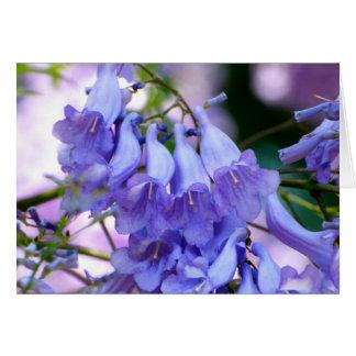 キリモドキの花 カード