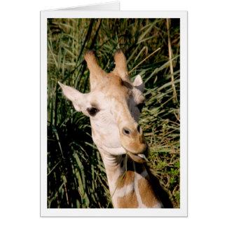 キリンと注目する目 カード