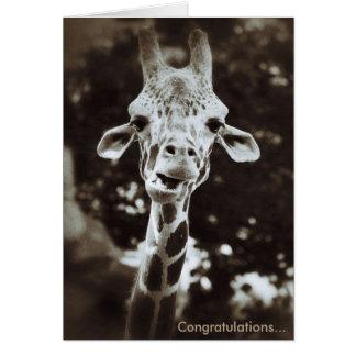 キリンのお祝いの挨拶状 カード