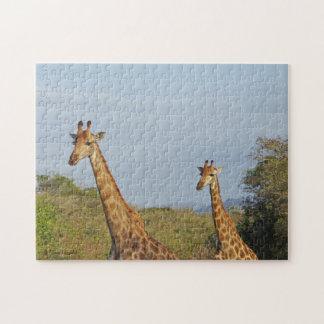 キリンの写真のパズル ジグソーパズル