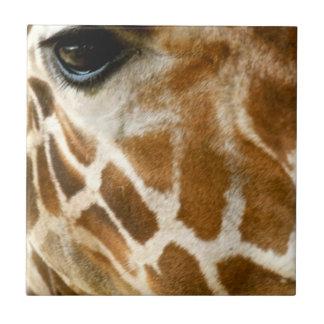 キリンの顔のクローズアップ|の野生動物の自然の写真 タイル