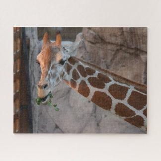 キリンを牧草を食べること ジグソーパズル