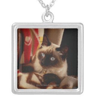 キルトを通ってかいま見ている猫 シルバープレートネックレス