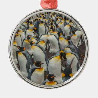 キングペンギンのコロニー、フォークランド シルバーカラー丸型オーナメント