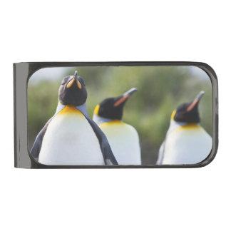 キングペンギン ガンメタル マネークリップ