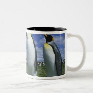 キングペンギン、コウテイペンギン属のpatagonicus)、 ツートーンマグカップ